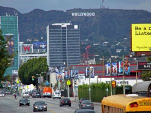 Crazy Busy Hollywood