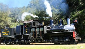 Roaring Camp and Big Trees Railway