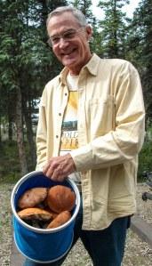 Wild mushroom picker