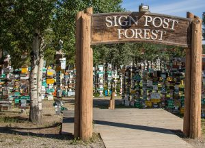 Signpost Forest