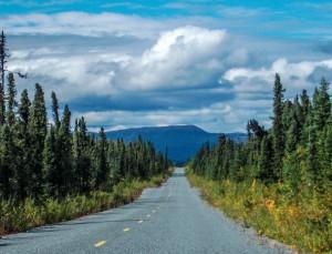 Typical Alaskan landscape along the Nabesna road