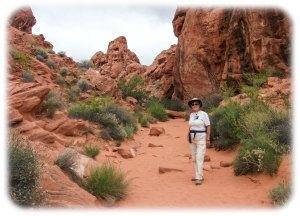 Mouse's Tank Petroglyph Trail