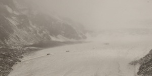 Snowy day on the Icefields Parkway