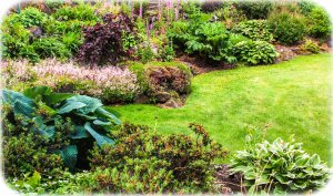 Vancouver Island is a gardeners paradise